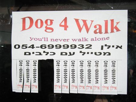 Dogs escort
